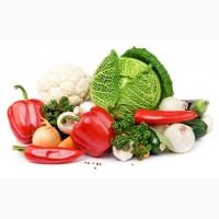 Беру заказы на поставку овощей, Харьковская обл