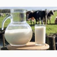 Продам свіжозібране молоко оптом від власних корів