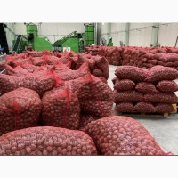 Walnut export, 2020-2021 crop, ceviz KABUKLU Грецкий орех Мерсин