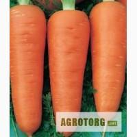 Продам морковь оптом, цена договорная