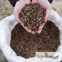 Семена арбуза Топ Ган F2