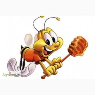 Куплю мёд оптом без антибиотика вся Украина