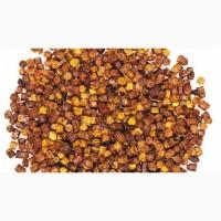 Перга пчелиная очищенная в гранулах, продажа и доставка по всей Украине