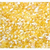 Закупка кукурудзи вологої, битої, некондиції травленої