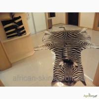 Продам Шкуру Зебры / Hartman s Zebra, Киев