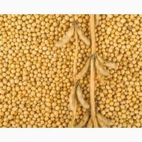Семена сои МОНРО под гербицид 1 репрод
