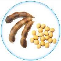 Семена сои Диона, Валюта, Аратта, Святогор, Золушка, Ромашка