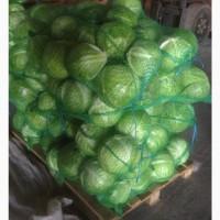 Продам овощи свежие крупным оптом