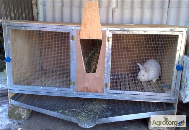 Как быстро сделать клетки для кроликов
