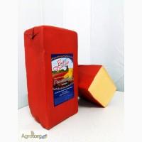 Сир твердий Голандський брусковий