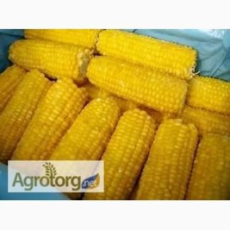 Кукуруза в початках замороженная