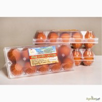 Продаем яйцо куриное от производителя СТОВ Колосок