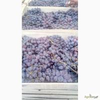 Продам виноград Юпитер киш-мыш.Лора