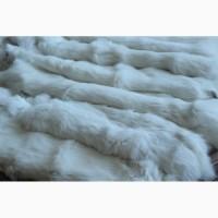 Шкуру кролика выделанную белую оптом продам