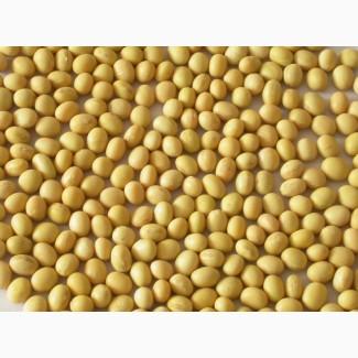 Закупаем сою базовую и низкопротеиновую (до-24% на сухое вещество)