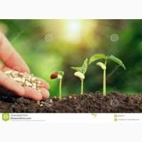 Великий урожай с нашими удобрениями, селитра, сульфат, аммофос, нитроаммофоска, суперагро