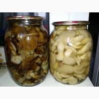 Продам грибы маринованные: белые, маслята, опята