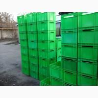 Ящики пластиковые сплошные молочные