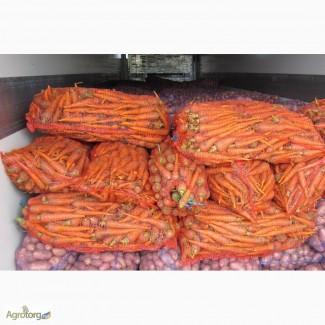 Морковь второго сорта оптом и крупным оптом для переработки