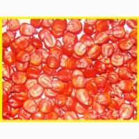 Продам насіння кукурудзи української селекції