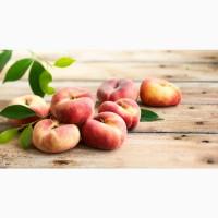 Продаємо Парагвайський Персик. Прямі оптові поставки з Іспанії