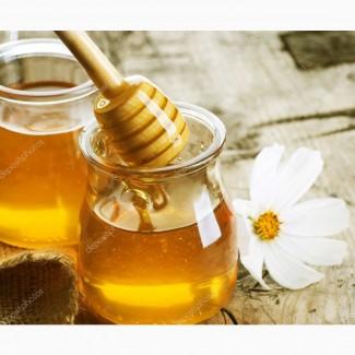 Купим мед без антибиотиков у пчеловодов