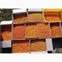 Продаем облепиху свежую урожая 2021г