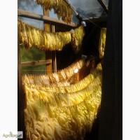 Семена табака - 100 сортов. (Насіння тютюну)