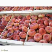 Инжирный/плоский персик из Испании