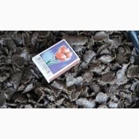 Продам жмых подсолнечника сыродавленный пр.21-23% на корм оптом