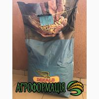 Продам семена кукурузы Монсанто ДКС 315, ДКС 3420, ДКС 3511, ДКС 3939, ДКС 3705, ДКС 4014