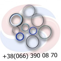 00130686 Ремкомплект 60-30 гідроциліндра 00130668 HORSCH Хорш