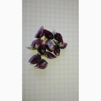 Продам воздушку чеснока Любаша урожай 2019 года