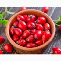 Закуповуємо оптом свіжу ягоду шипшини. Вся Україна