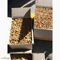 Чищеный грецкий орех Бабочка светлая
