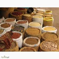 Очистка, протруювання та калібрування насіння сої