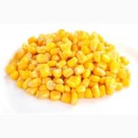 Продам кукурузу 600 т. Оплата: Ф1 и Ф2