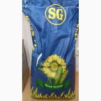 Продаём семена кукурузы