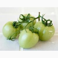 Купим зеленый помидор
