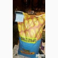 Семена Monsanto (Монсанто) кукуруза Dekalb