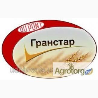 Гербицид Гранстар (Трибенурон-метил, 750 г/кг)