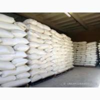 Сахар оптом на экспорт