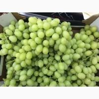 Продам Виноград из Египта ( Красный - FLAME Бнлый - SUPERIOR)