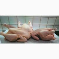 Купуємо курятину в роздріб