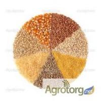На постоянной основе закупаем кукурузу, семечку, рапс, пшеницу, сою по Винницкой обл