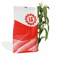 Гибриды кукурузы ЛИМАГРЕЙН (Limagrain)