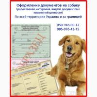 Оформить родословную на собаку. Оформление помета, Харьков