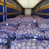 Продам картофель оптом, качество отличное, не дорого