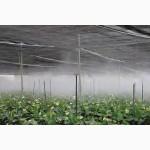 Увлажнение воздуха, дезинфекция, борьба с вредителями в грибоводстве