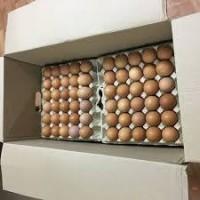 Оптовая реализация яйцо куриное